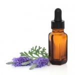 lavendar-homeopathy